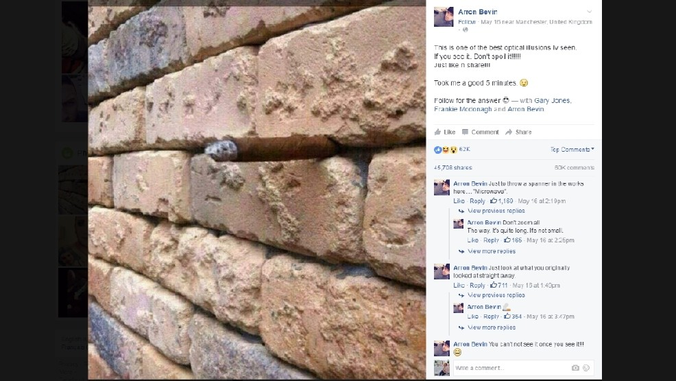 This Brick Wall Optical Illusion Is Breaking The Internet