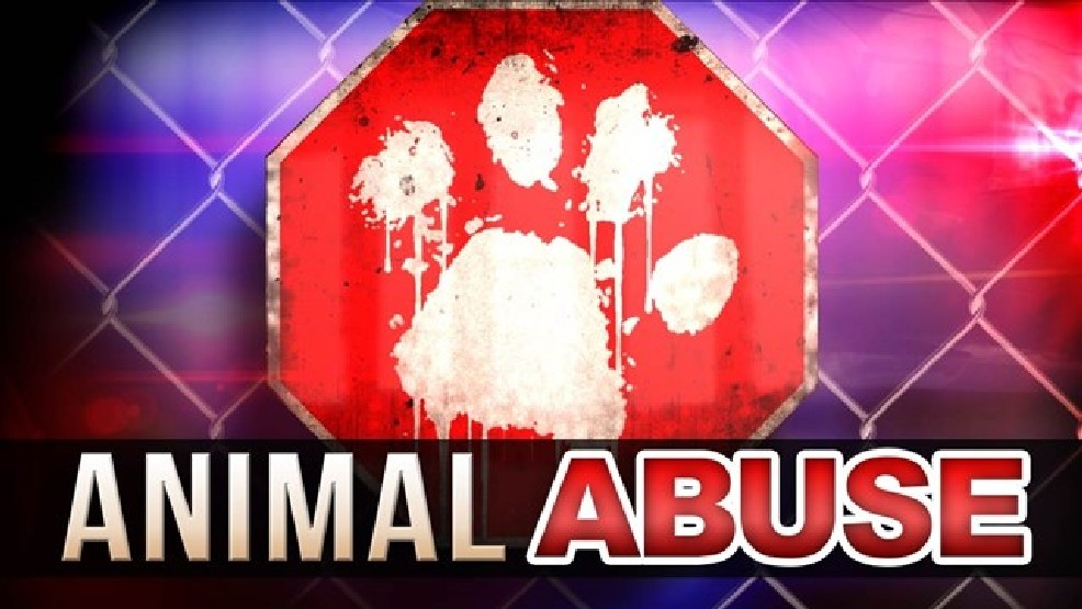 West Va  man charged with felony sexual animal abuse | WSET